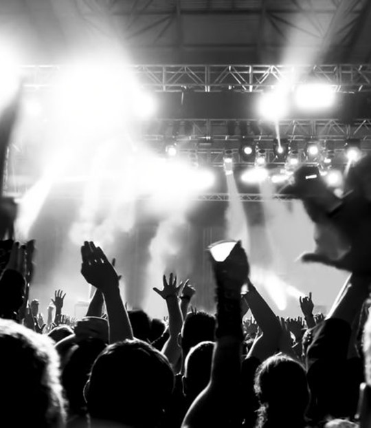Some Causes of Hearing loss - loud music at a concert